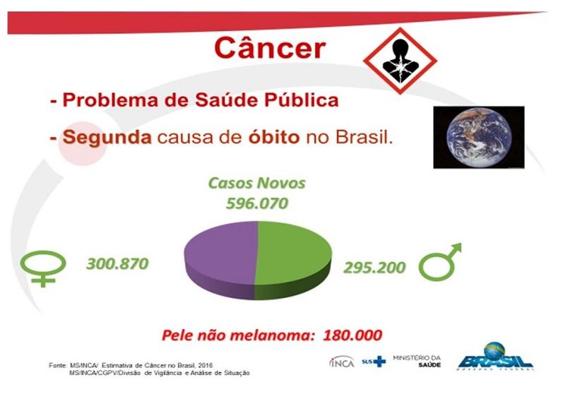 Fonte: Prof.ª Drª Marcia Sarpa de Campos Melo