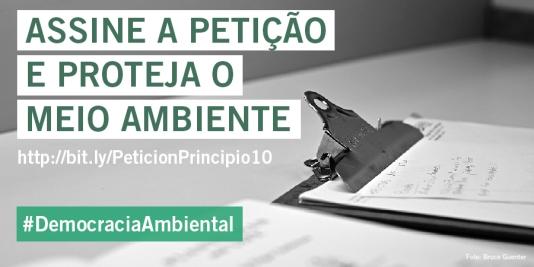 Petição