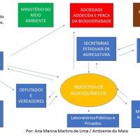 Possíveis soluções para questões relacionadas ao uso de agrotóxicos