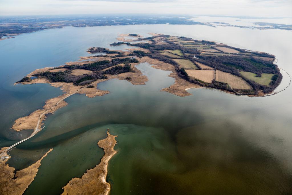 Reserva de vida silvestre no condado de Kent, em Maryland, nos Estados Unidos.